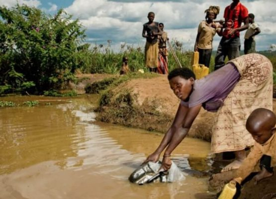 Desperate for Shelter and Clean Water