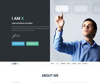 "<span itemprop=""name"">I AM X WordPress Resume Theme</span>"